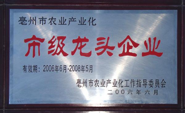 龙头企业2006