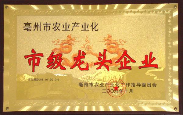 龙头企业匾2008